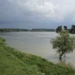 Dalj - Pogled na Dunav s daljske šetnice (Vukmanić 2011)