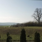 Popovac - Mjesto potencijalnog rimskog vojnog logora (Vukmanić 2009)