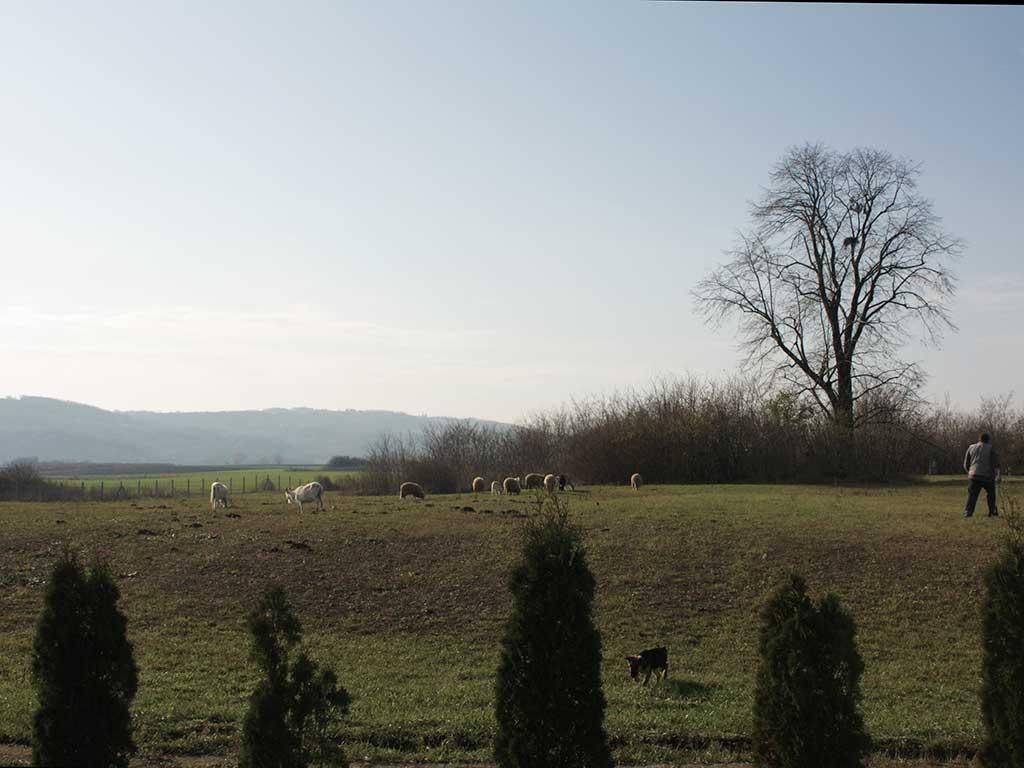 Popovac - Mjesto potencijalnog-rimskog-vojnog logora (Vukmanic 2009)