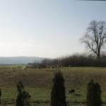 Popovac - Potential Roman military camp site (Vukmanić 2009)