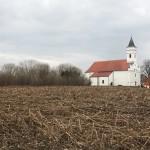 Sotin - Izgled lokaliteta (Vukmanić 2009)